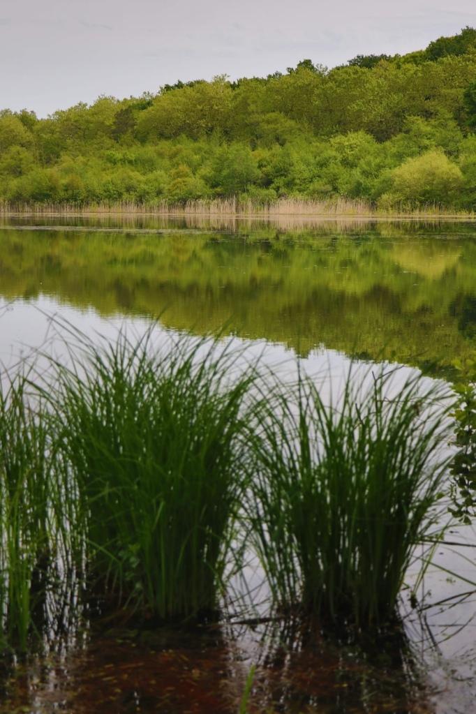 Le Lac des Abesses